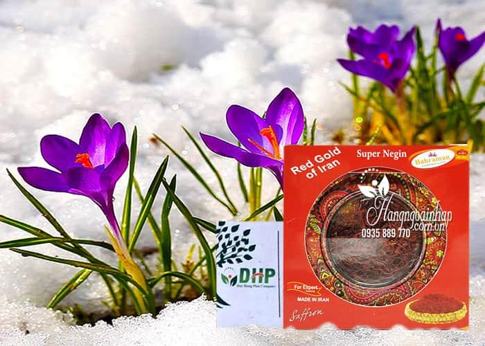 Nhụy hoa nghệ tây Bahraman Saffron Super Negin của Iran 1
