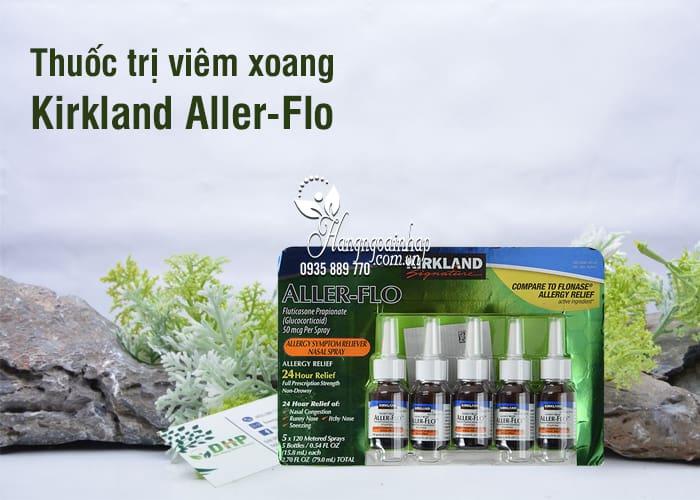 Thuốc trị viêm xoang Kirkland Aller-Flo bộ 5 lọ chính hãng Mỹ 1