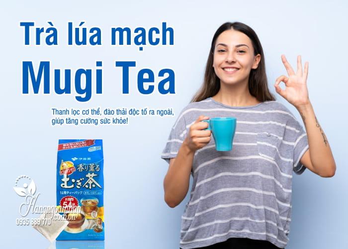 Trà lúa mạch Mugi Tea Nhật Bản 54 gói cho mọi lứa tuổi 8