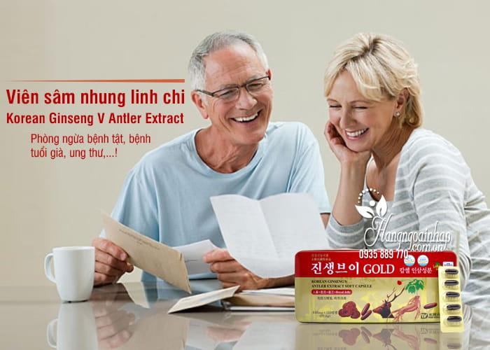 Viên sâm nhung linh chi Korean Ginseng V Antler Extract 1