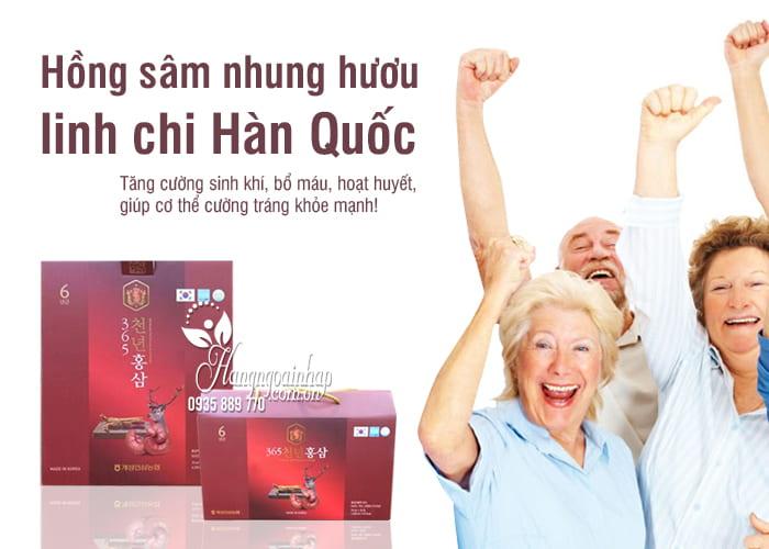 Hồng sâm nhung hươu linh chi 365 Hàn Quốc gói 70ml 8