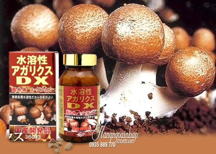 Nấm Agaricus DX 360 viên - Nấm thái dương DX núi của Nhật Bản 3