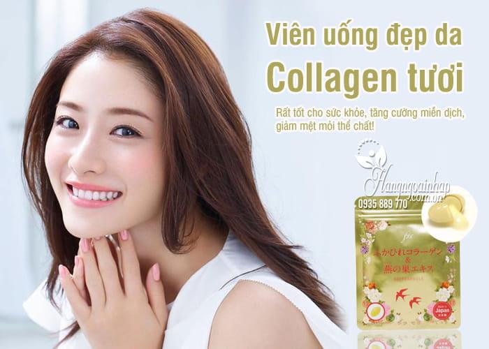 Viên uống đẹp da Collagen tươi của Nhật 30 viên, giá đại lý 1