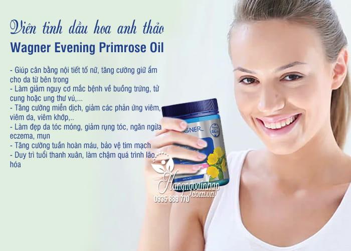 Viên tinh dầu hoa anh thảo Wagner Evening Primrose Oil 1000 3