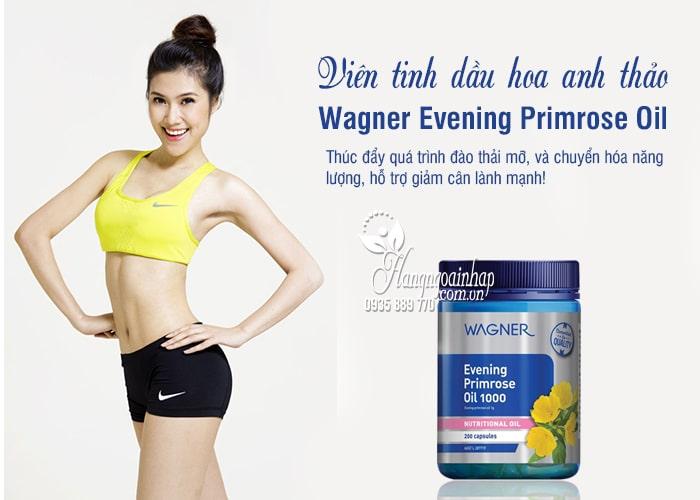 Viên tinh dầu hoa anh thảo Wagner Evening Primrose Oil 1000 1