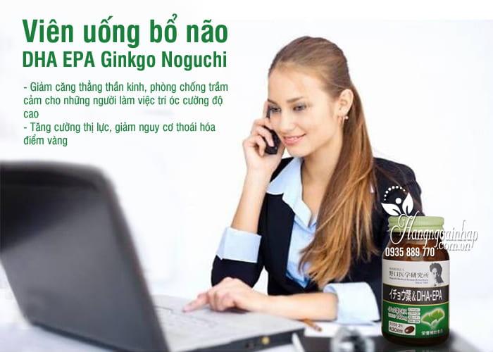 Viên uống bổ não DHA EPA Ginkgo Noguchi 60 viên của Nhật Bản 1