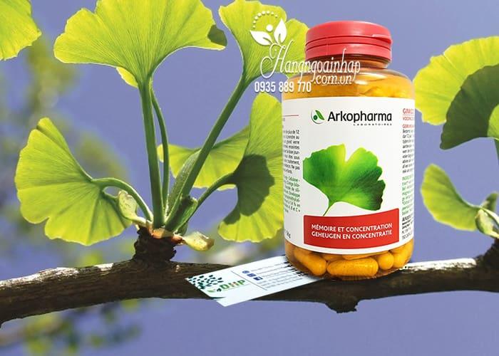 Viên uống bổ não, tăng cường trí nhớ Ginkgo Arkopharma 150v 2