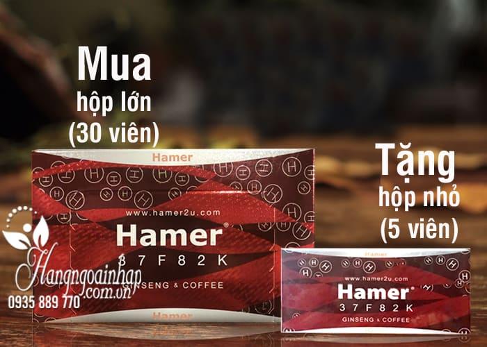 Kẹo sâm Hamer Ginseng & Coffee, mua 1 tặng 1  45