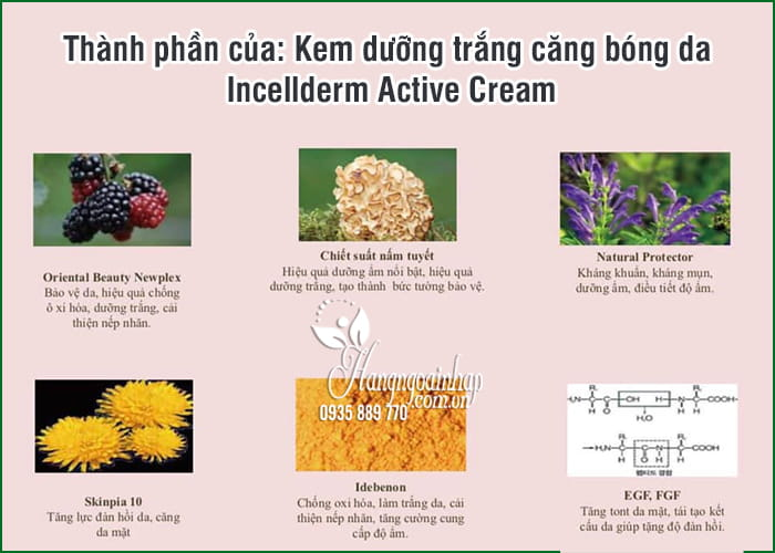 Kem dưỡng trắng căng bóng da Incellderm Active Cream 50ml 7