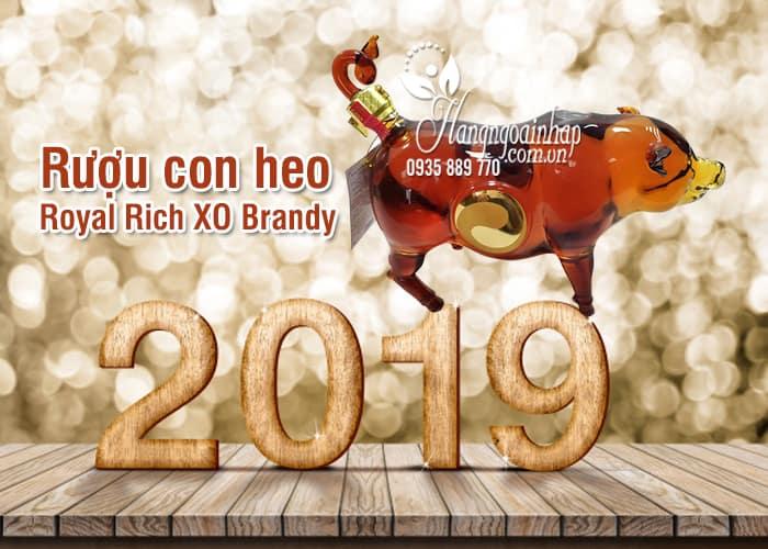 Rượu con heo Royal Rich XO Pháp, rượu heo Đông Hồ 2019 4
