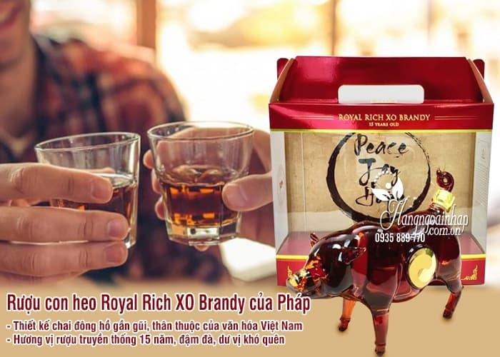 Rượu con heo Royal Rich XO Pháp, rượu heo Đông Hồ 2019 2