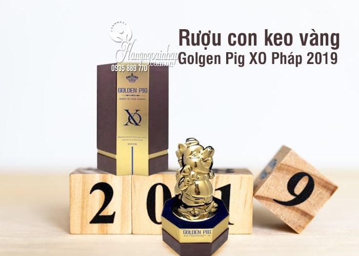 Rượu con heo vàng Golden Pig XO Pháp 2019, quà biếu sang trọng 5