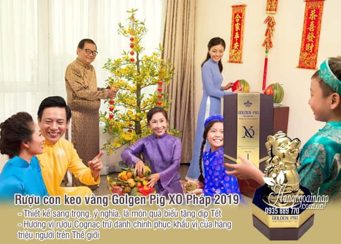 Rượu con heo vàng Golden Pig XO Pháp 2019, quà biếu sang trọng 2