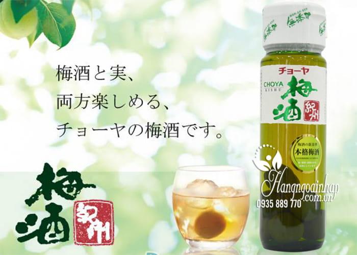 Rượu Mơ Choya Của Nhật Bản-Choya Umeshu Kishu 12