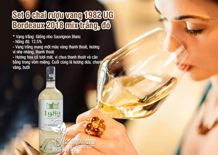 Set 6 chai rượu vang 1982 UG Bordeaux 2018 mix trắng, đỏ 5