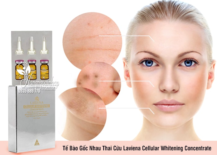 Tế Bào Gốc Nhau Thai Cừu Laviena Cellular Whitening Concentrate 2