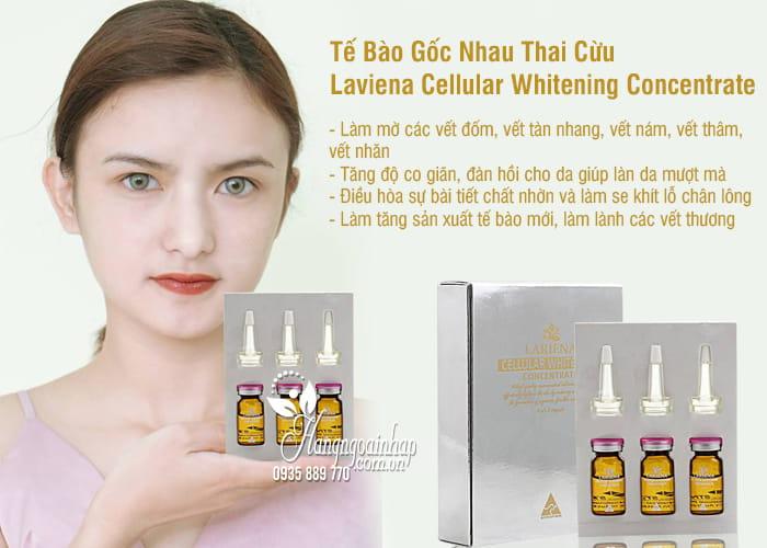 Tế Bào Gốc Nhau Thai Cừu Laviena Cellular Whitening Concentrate 1