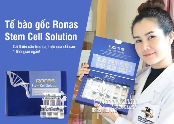 Tế bào gốc Ronas Stem Cell Solution Hàn Quốc 10 x 5ml 1
