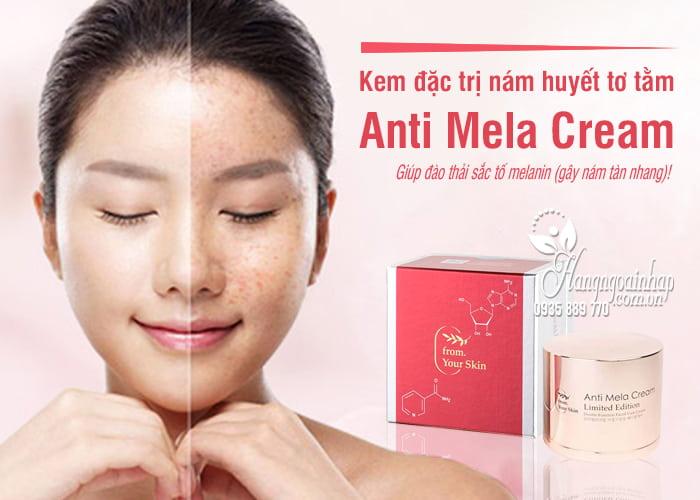 Kem đặc trị nám huyết tơ tằm Anti Mela Cream 50ml Hàn Quốc 1