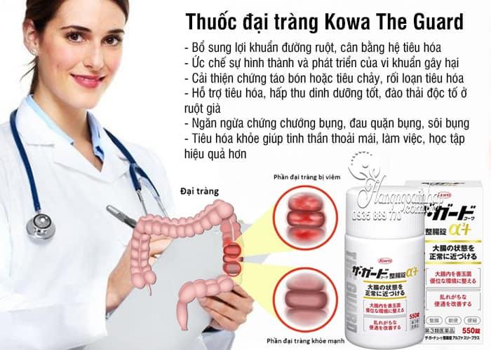 Thuốc đại tràng Kowa The Guard của Nhật, 350, 550 viên 2