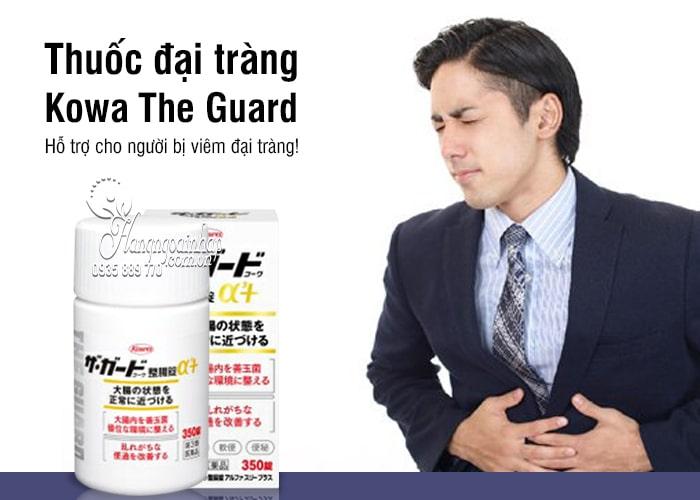 Thuốc đại tràng Kowa The Guard của Nhật, 350, 550 viên 5