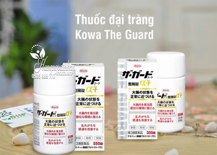 Thuốc đại tràng Kowa The Guard của Nhật, 350, 550 viên 1