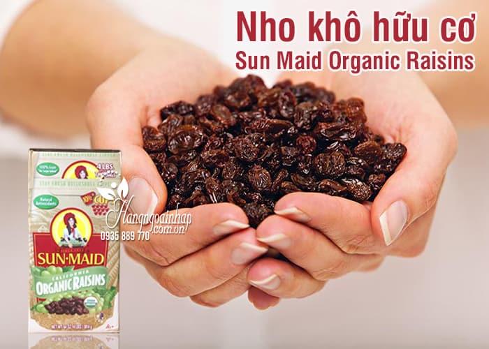 Nho khô hữu cơ Sun Maid Organic Raisins 907g x 2 của Mỹ 1