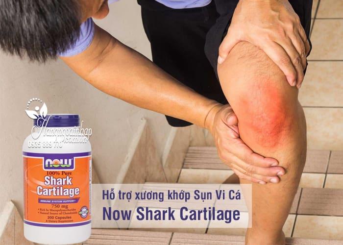 Sụn Vi Cá Now Shark Cartilage 300 Viên 750mg 4