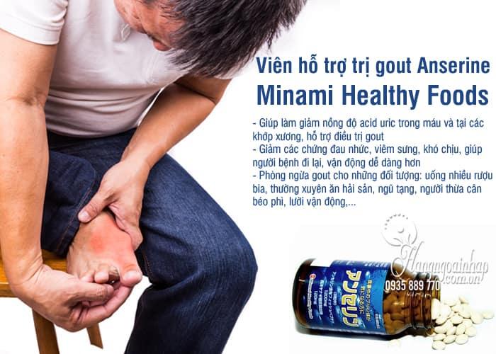 Viên hỗ trợ trị gout Anserine Minami Healthy Foods 240v Nhật 1