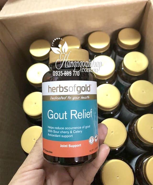 Viên uống hỗ trợ trị bệnh Gút Gout Relief Herbs Of Gold Úc 9