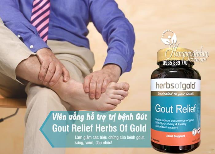 Viên uống hỗ trợ trị bệnh Gút Gout Relief Herbs Of Gold Úc 1