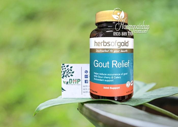 Viên uống hỗ trợ trị bệnh Gút Gout Relief Herbs Of Gold Úc 2