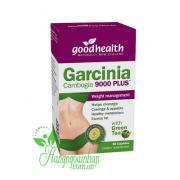 Thuốc giảm cân Garcinia Cambogia Good Health 9000 ...