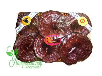 Nấm linh chi đỏ Geumsan của Hàn Quốc khay 1kg
