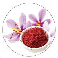 Nhụy hoa nghệ tây Saffron Badiee - Vàng đỏ của Iran