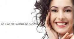Tư vấn nên dùng loại collagen nào hiệu quả?