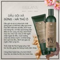Dầu gội xả gừng hà thủ ô Weilaiya chính hãng ngăn rụng tóc