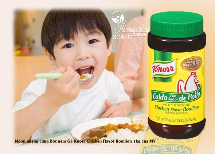 Bột nêm Gà Knorr Chicken Flavor Bouillon của Mỹ
