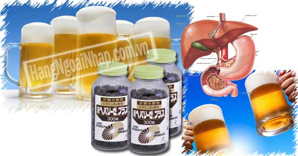 Liver Hydrolysate With Vitamin B15