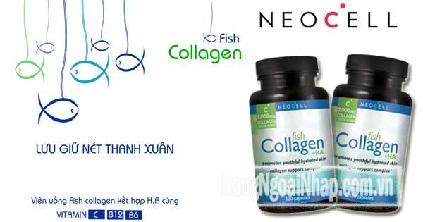 Viên Uống Neocell Fish Collagen +Ha 2000mg 120 Viên