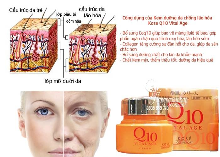 Kem dưỡng da chống lão hóa Kose Q10 Vital Age của Nhật 3