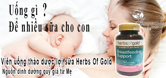 Viên uống lợi sữa Herbs Of Gold Breastfeeding Support của Úc công dụng