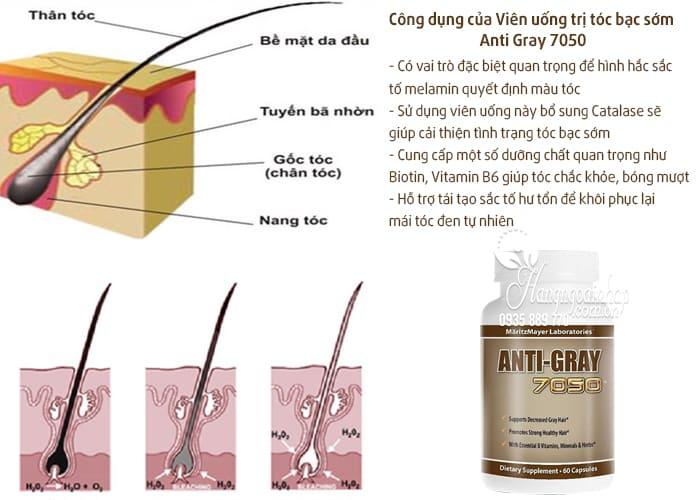 Viên uống trị tóc bạc sớm Anti Gray 7050 hộp 60 viên từ Mỹ