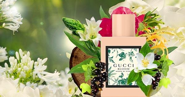 nước hoa Gucci Bloom ĐÁNH GIÁ