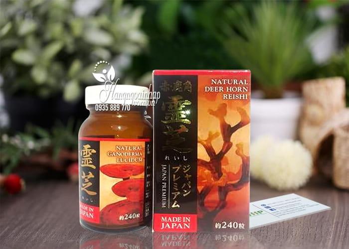 Nấm Linh Chi Sừng Hươu Nhật Bản Chính Hãng Hộp 240 Viên Giá Tốt 1