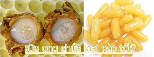 sua-ong-chua-loai-nao-tot