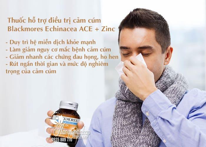 Thuốc hỗ trợ điều trị cảm cúm Blackmores Echinacea ACE + Zinc 3