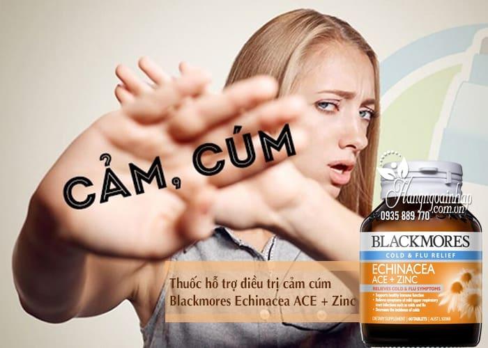 Thuốc hỗ trợ điều trị cảm cúm Blackmores Echinacea ACE + Zinc 2