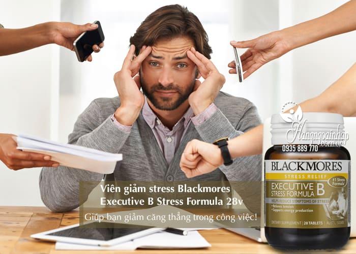 Viên giảm stress Blackmores Executive B Stress Formula 28v 2