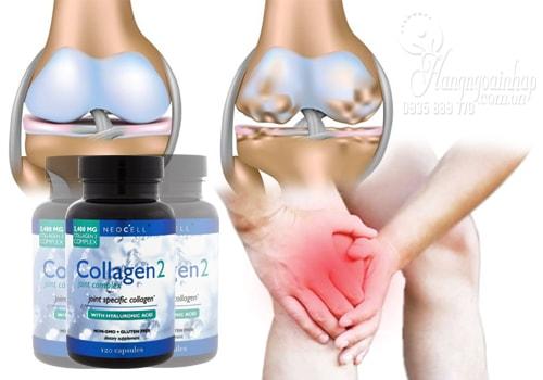 Collagen Type 2 - Collagen Tuýp 2 Không Biến Tính Của Mỹ